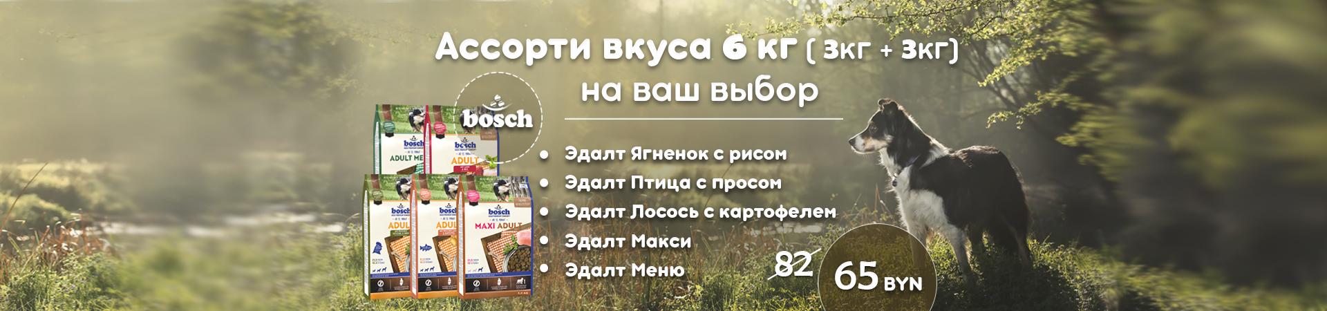 1920_3plus3_01.09.2020