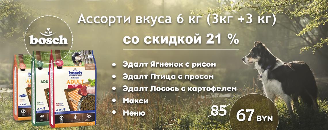 3plus3